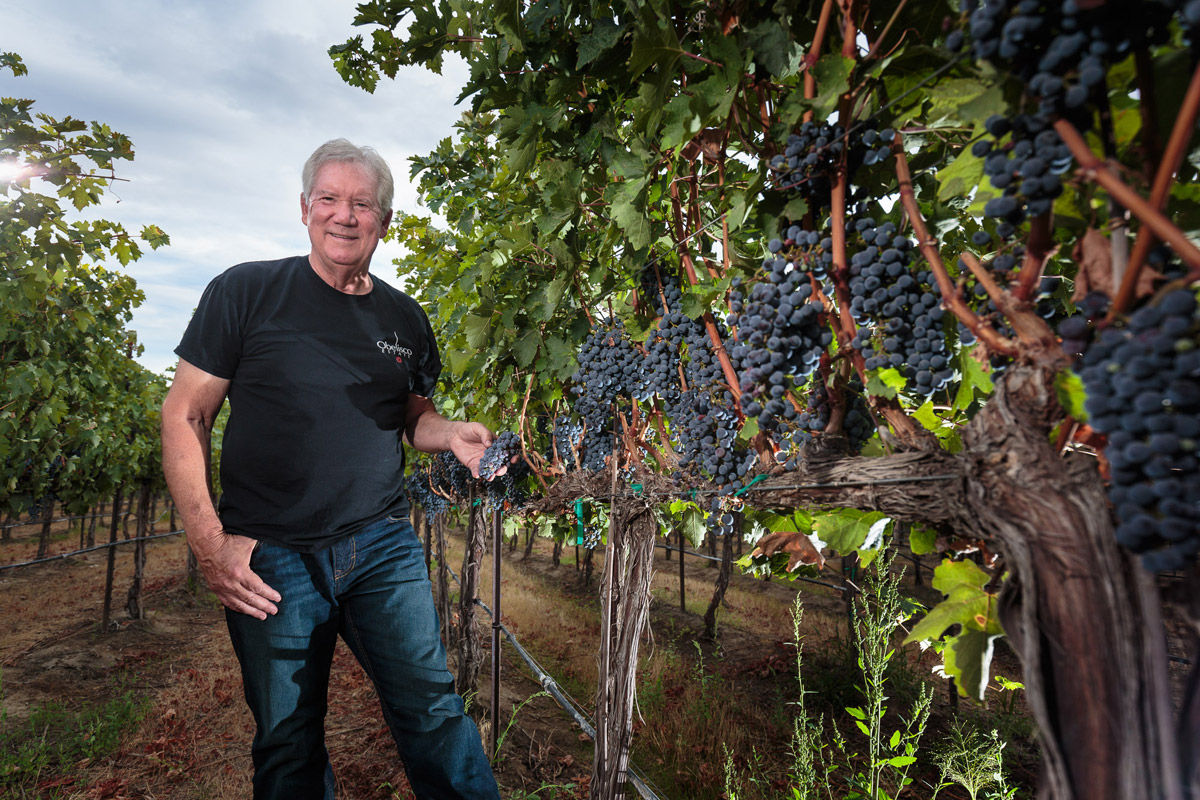 Doug Long in Obelisco Estate Vineyard