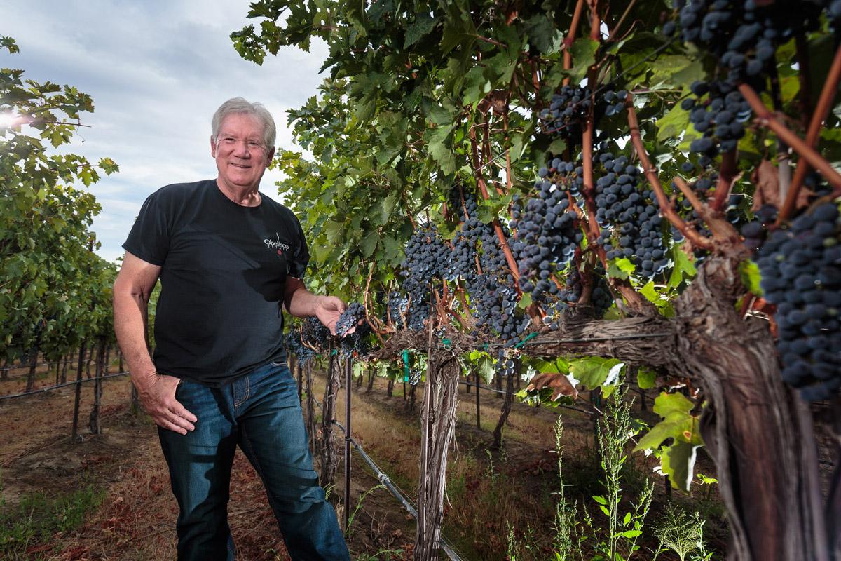 Doug Long in Obelisco Estate Vineyard
